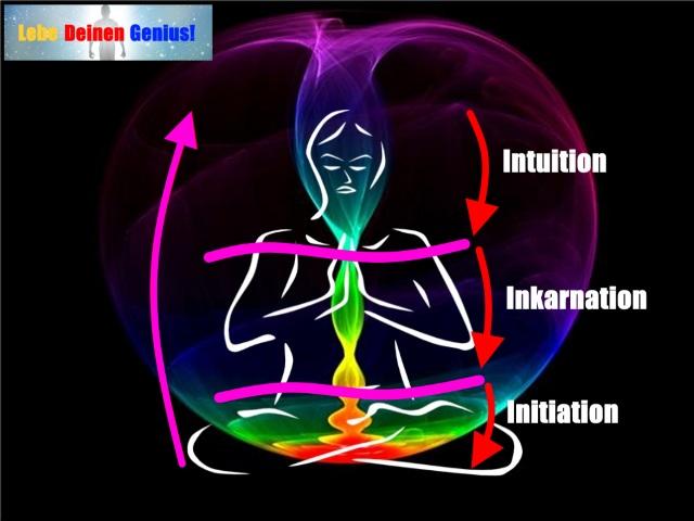 Mensch Farben Intuition Lebe Deinen Genius